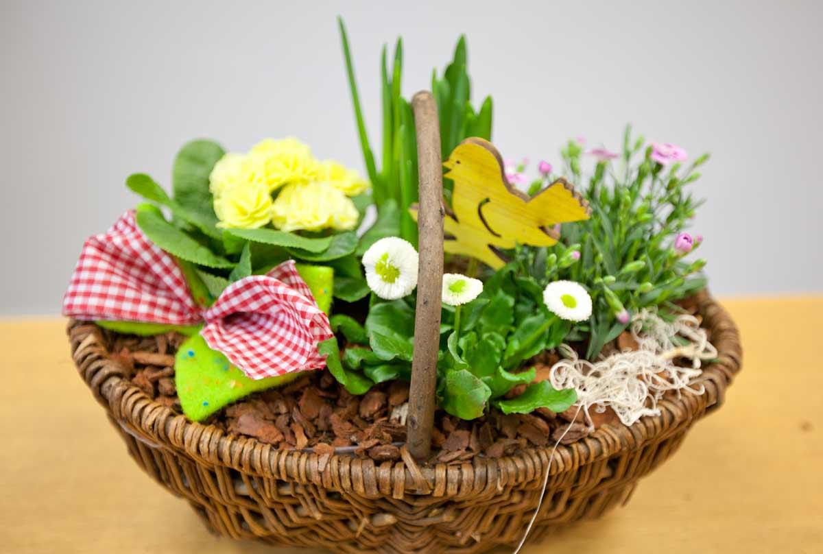 Büro-Floristik - frühsommerlich dekorierte Körbe